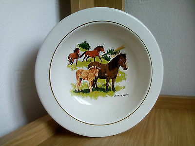 Vintage Retro Exmoor Pony Heavy Pottery Ashtray