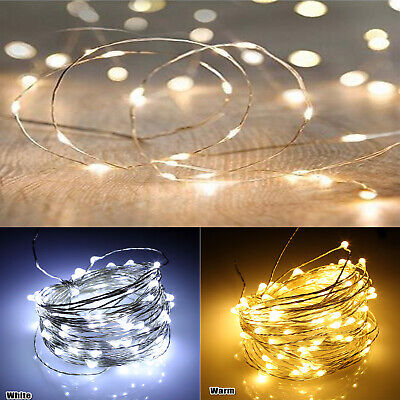 LED Copper Wire String Fairy Lights Party Home Decor Warm & White Lights AU SLR