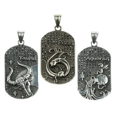 Steel Zodiac Signs Constellation Astrology Horoscope Steel Pendant Necklace