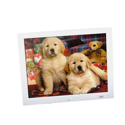 """15"""" TFT LCD Digital Photo Frame Picture Image Movie Player Remote Control O0B3"""