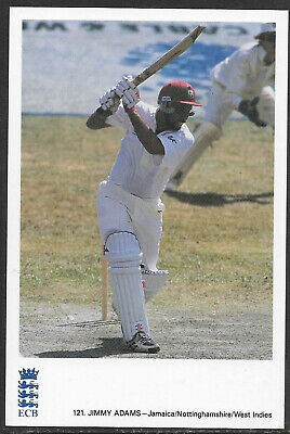 JIMMY ADAMS (JAMAICA/NOTTINGHAMSHIRE/WEST INDIES) - ECB CRICKET POSTCARD No. 121