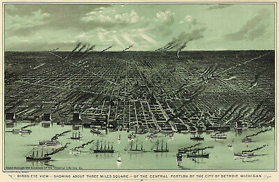 Detroit Michigan c1889 map 16x24