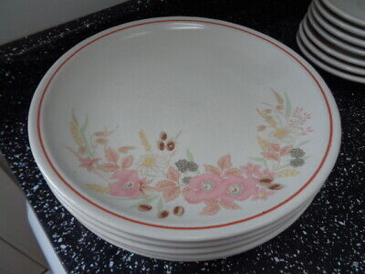 Boots Hedge Rose Dinner Plates X 5