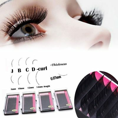 Mink Blink Lashes Tray Lash 0.07/0.1mm Curl For Individual Eyelash Extensions Ih
