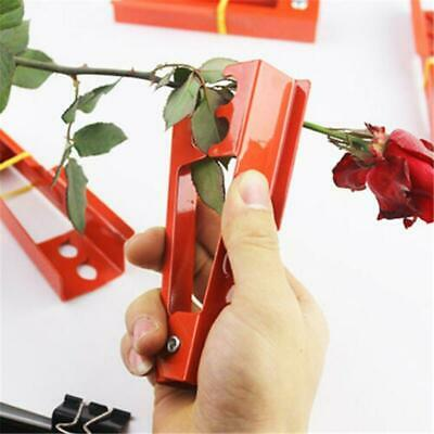 Smithers Oasis Thorn And Rose Stripper Floristry Flower Arranging Gardening 6114
