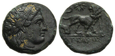 FORVM Miletos Ionia c. 350-300 BC Apollo / Lion Star 3.987g Bronze
