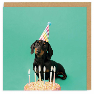 Birthday Card | Scout Party Hat