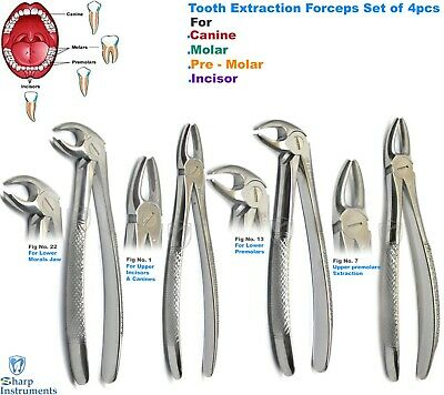 Root Forceps Tooth Extraction Dental Extracting Roots Pick Forcep Instrument 4pc
