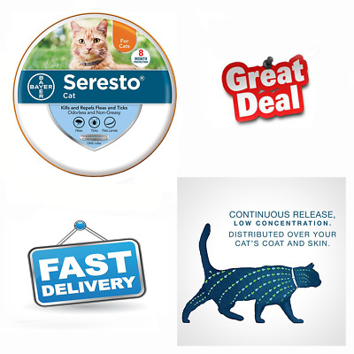 Bayer Animal Health Seresto Flea and Tick Collar for Cat, 8 months protection