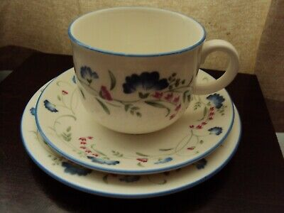 royal doulton expressions windermere trio cup & saucer