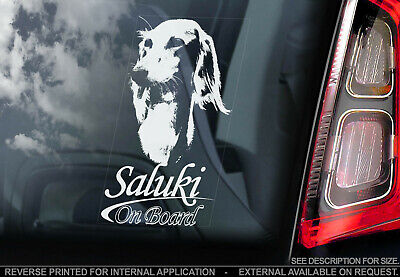 Saluki - Car Window Sticker - Dog Sign Decal Print Hound Persian Greyhound - V01
