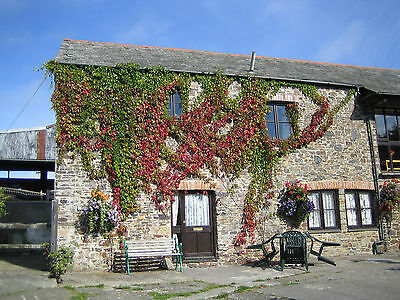 King 4 poster 4* holiday cottage Devon 7nts 25MAY 4 pers   Nr Bude beaches £275