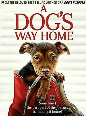 A Dog's Way Home DVD Movie Brand New