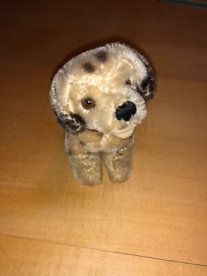 Steiff Dally 10cm