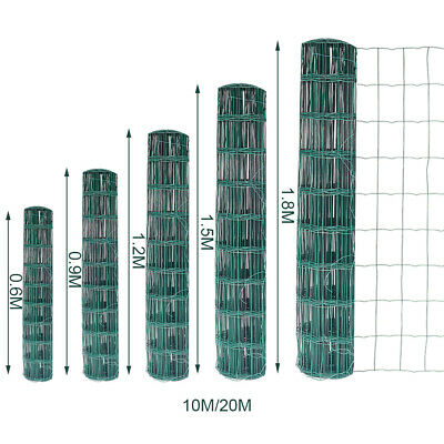 Green PVC Plastic Coated Chicken Wire Netting Mesh Fence Galvanised Fencing Web