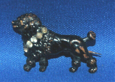 A very unusual Victorian black enamelled poodle dog brooch, paste stone collar