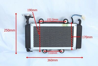 Road Legal Quad Bike Radiator ,Bashan Jinling Spy Venom Style  Project Buggy