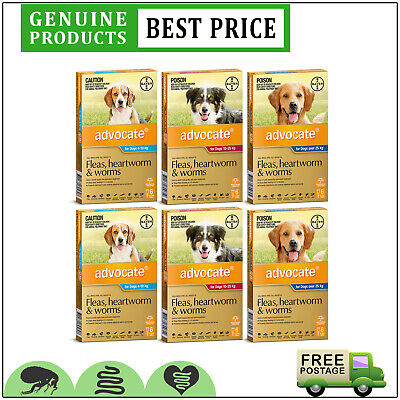 ADVOCATE Flea Heartworm and Worm Control for Dogs 12 Doses All Sizes by Bayer