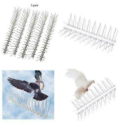 5/6*50CM Stainless Steel Bird Spikes Pigeon Fence Security Control Deterrent Kit