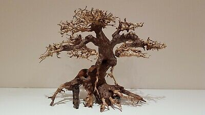 Bonsai Tree Ornament Aquarium Decoration - Real Wood - Large - Approx 25 x 20 CM