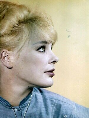 Elke Sommer Actress Famous 8x10 Picture Celebrity Print