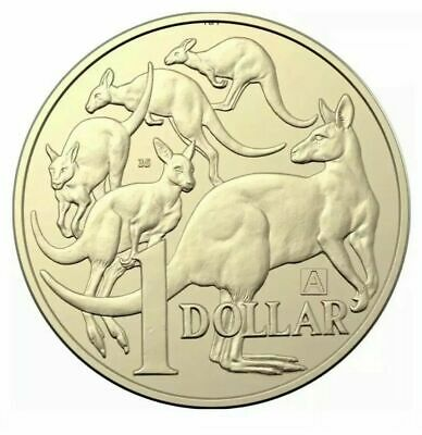 2019 One Dollar Coin - *Mob Of Roos* -*Mint Mark A & Privy 35* -Ex Mint Bag -Unc