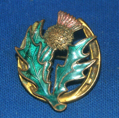 An antique horseshoe, thistle brooch pin, enamelled, equestrian, Scottish