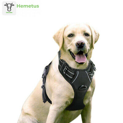 Rabbitgoo Dog Harness No-Pull Pet Adjustable Outdoor Large, Black