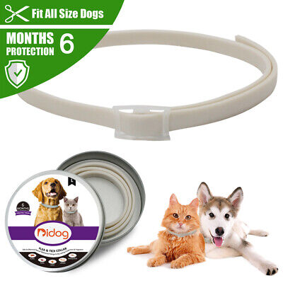 Waterproof Flea and Tick Collar for Dogs Anti Insect Prevent 6 Months Protection