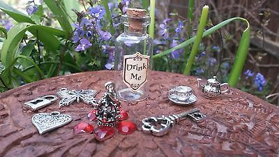 Drink Me Alice In Wonderland Bottle with Key & charms Party Bag, Stocking filler