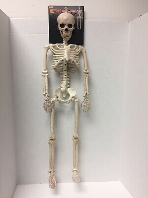 "Halloween Hanging Skeleton 36"" Poseable Prop Decoration 3ft"