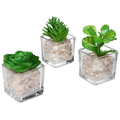 Clear Glass Planter Pot Faux Plants Potted Artificial Succulent Plants, Set of 3
