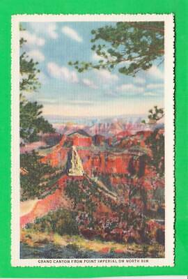 Postcard ~ Grand Canyon from point Imperial on N. rim ~ Vintage 6691
