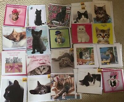 Joblot Wholesale Birthday Greetings Cards Animals Cats X 40 All Photographed