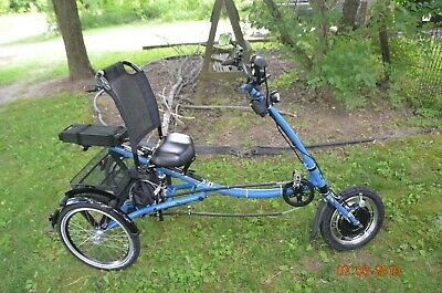 PFIFF Electric Tricycle ETrike Adult Scooter Style: L-Tricycle 5 Speed 48v 1000w