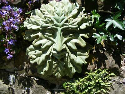 Greenman / Stone Sculpture / Christine Baxter