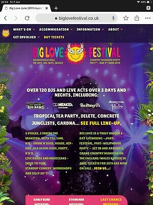 BIG LOVE FESTIVAL Weekend Ticket X 1
