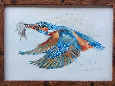 ORIGINAL Watercolour Painting FLYING KINGFISHER Bird in Flight With Fish FRAMED