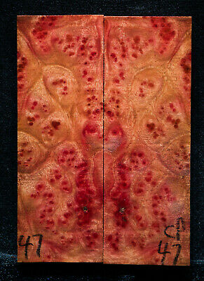 """Camphor Burl #47 Knife Scales 5""""x1.75""""x3/8"""" see my 100 species 1000 scales"""
