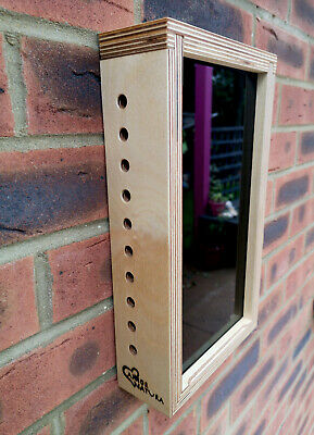 Solitary Bee/Bug 10 hole observation box