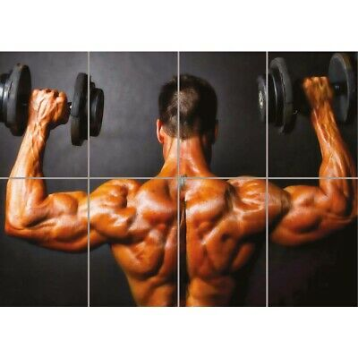 Bodybuilding Weight Lifting Gym Muscles New Giant Wall Art Print Poster