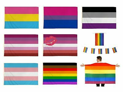 PRIDE FESTIVAL FLAGS LGBT Rainbow Diversity Lesbian Gay Parade 5ft x 3ft Flag UK