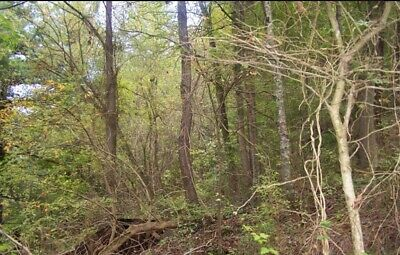 Highland, Ar Sharp County 1/4 Ac. Vacant Lot/ Plum Lake! $1920 Total Price