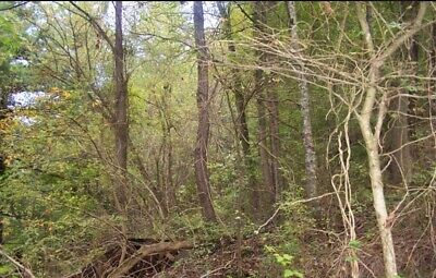 McDOWELL ST. LOT IN WELCH-NORTHFORK BL4 LOT 12 VACANT LOT B/T HOMES!