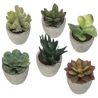 Assorted Artificial Succulent Plant Arrangement in Gray Pots, Set of 6