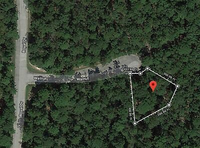 Approx  1/4 Acre Residential Buildable Lot - Lake Livingston / Huntsville TX