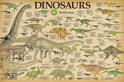 DINOSAURS - SMITHSONIAN POSTER 24x36 - CHART SCHOOL 241203