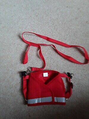 Cat Lead and harness Size Small