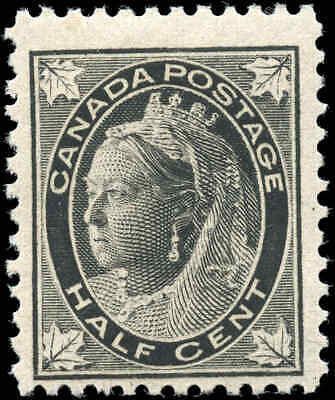 1897 Mint Canada Scott #66 1/2c Maple Leaf Issue Stamp Never-Hinged