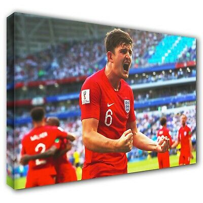 Canvas Print 5 Sizes EN06 ENGLAND CELEBRATE Penalty Shoot Out Win vs Colombia